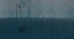 2304 Rain (1)