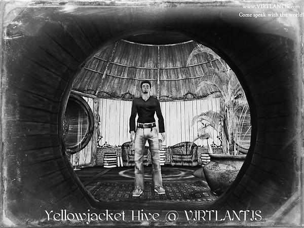 Yellowjacket Hive @ VIRTLANTIS (Knowingly)