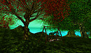 kittens heaven hacienda - Tibor17