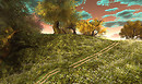 kittens heaven hacienda - Tibor5