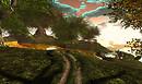 kittens heaven hacienda - Tibor2