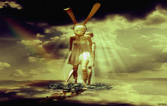 Dolly Rabbit
