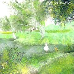 A spring brook