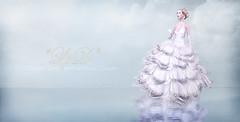 *LpD* for Avenue Fashion Week 2013