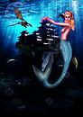 Pocka-Mermaid