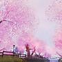kagurazaka sakura