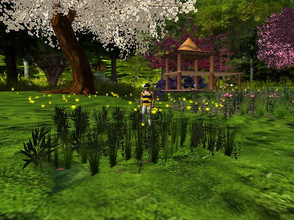 Relaxing in new flowers, Devis Garden (5)