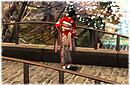 Bridge and Kimono