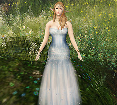 FantasyFaire Review2