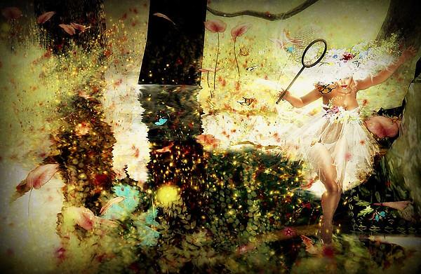 The Fairy Hunt