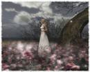 The Night is Darkening Around Me by Emily Bronte