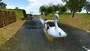 SwanBoat-08