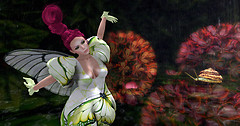 Visiting Hydrangea