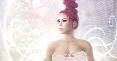 Fairy Paradise