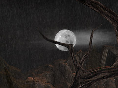 Moon in the rain_001