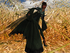 Nym in the Hay_001