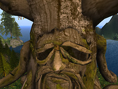A Face in the Tree_001