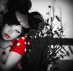 Lost Minnie two on Dreamers Coast