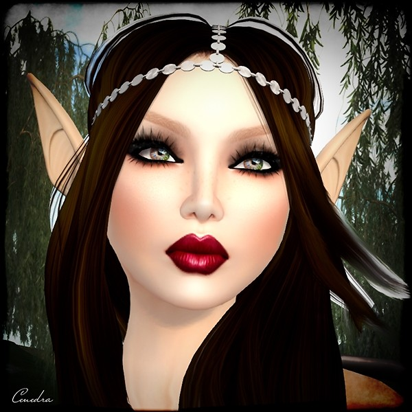 Fairy ~ Closeup