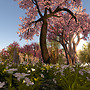 Serenity Gardens 1