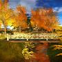 Bridge of Fall Colors