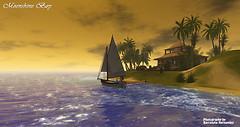 Moonshine Bay 1