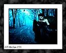 dark witch forest