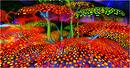 Paula's Paradise Color Garden