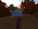 Zen evening 1_004