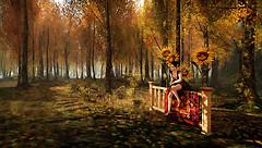 Autumn @ The Trace kp