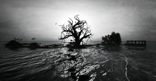Imagination ~ Guana Cay