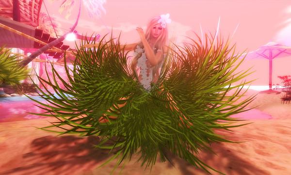 Island Bride 2
