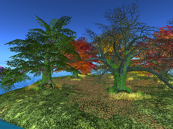 Scarlet Oaks at Kitely