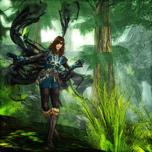 Today I visited CHAKRYN FOREST.