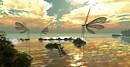 Imagination- Guana Cay 4