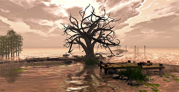 Imagination- Guana Cay 3
