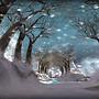 ...un chemin sous la neige...