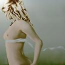 Il cinto di Venere  Venus's girdle