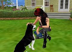 You're a cute Dog :3