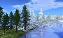 Spruce tree - all seasons