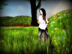 spring day_001