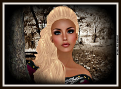 Nikki Profile Final 1