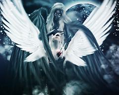 .:°Edonil&Cryso - Ed ora siamo rimasti con un cuore incerto fra le mani che non ha più un anima da contenere°:.