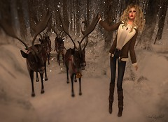 I Found Santa's Reindeer!