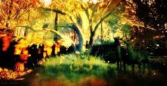 Sunshine at Imaginaria Sim