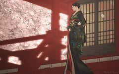 Silvery-K-kimono-Rinzu002
