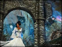 Stranger in Fairyland