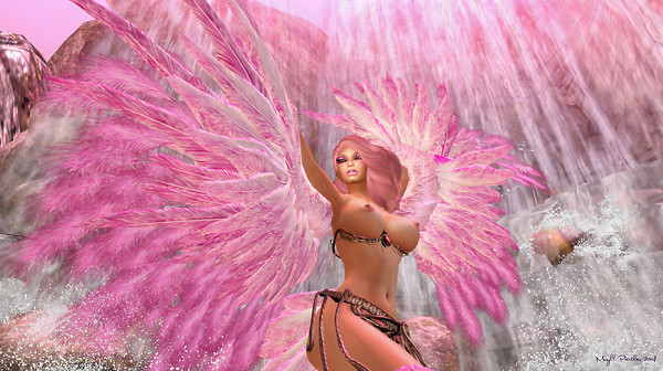 Dance of the Flamingo Harpy