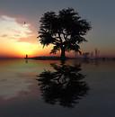 Sunset 3D