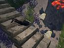 Planting Seaweed, Fish & Volcano - chimera.cosmos
